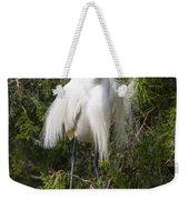 Angry Bird Snowy Egret In Breediing Plumage Weekender Tote Bag