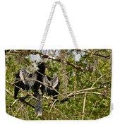 Anhinga Preening Weekender Tote Bag