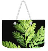 Annual Wormwood Weekender Tote Bag