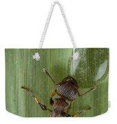 Ant Drinking From Water Droplet Papua Weekender Tote Bag by Piotr Naskrecki