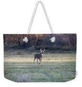Antlers In The Sun Weekender Tote Bag