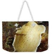 Aphelodoris Varia Sea Slug Nudibranch Weekender Tote Bag