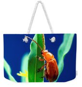 Aphthona Flava Flea Beetle On Leafy Weekender Tote Bag