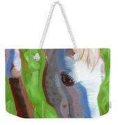 Appaloosa Weekender Tote Bag