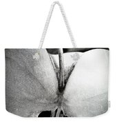 Apple 3 Weekender Tote Bag