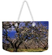 Apple Trees In An Orchard, County Weekender Tote Bag