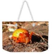 Araneus Marmoeus Weekender Tote Bag