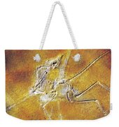 Archaeopteryx Lithographica Weekender Tote Bag