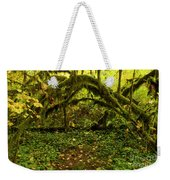 Arches In The Rainforest Weekender Tote Bag