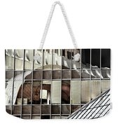 Architectural Reflections Weekender Tote Bag