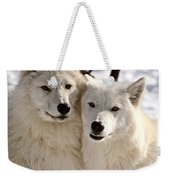 Arctic Wolves Close Together In Winter Weekender Tote Bag