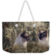 Are You Dreaming About Me - Siamese Feral Cat Weekender Tote Bag