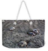 Arribada Of Olive Ridley Turtles, Costa Weekender Tote Bag