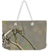 Arrowhead Spiketail Dragonfly - Cordulegaster Obliqua Weekender Tote Bag