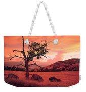 Ashland Sunset Weekender Tote Bag