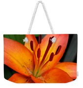 Asiatic Lily Named Gran Paradiso Weekender Tote Bag