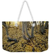 Aspen Trees Stand Above A Carpet Weekender Tote Bag