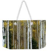 Aspen Trunks Weekender Tote Bag