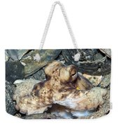 Atlantic Octopus In Shell Debris Weekender Tote Bag
