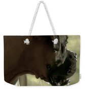 Attention Is Elsewhere...as Usual Weekender Tote Bag by DigiArt Diaries by Vicky B Fuller
