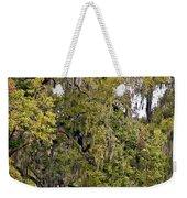 Audubon Park 2 Weekender Tote Bag by Steve Harrington