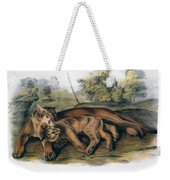 Audubon: The Cougar Weekender Tote Bag