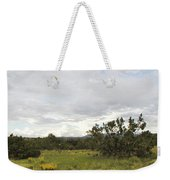 August Desert Weekender Tote Bag