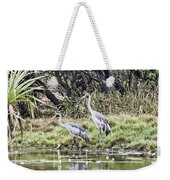 Australian Cranes At The Billabong Weekender Tote Bag