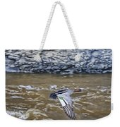 Australian Wood Duck In Flight Weekender Tote Bag