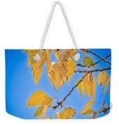 Autumn Aspen Leaves And Blue Sky Weekender Tote Bag