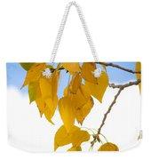 Autumn Aspen Leaves Weekender Tote Bag
