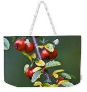 Autumn Berries Weekender Tote Bag