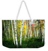 Autumn Birch Grove Weekender Tote Bag