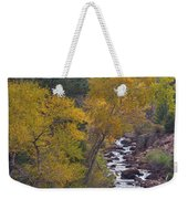 Autumn Canyon Colorado Scenic View Weekender Tote Bag