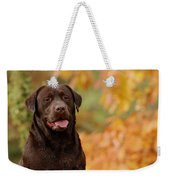 Autumn Chocolate Weekender Tote Bag
