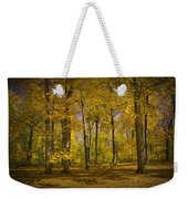 Autumn Forest Scene In West Michigan No.1140 Weekender Tote Bag