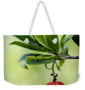 Autumn Fruits In Red Weekender Tote Bag