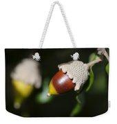 autumn fruits - Mediterranean acorn macro Weekender Tote Bag
