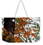 Autumn Glory At Tannehill Weekender Tote Bag