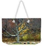 Autumn Grandfather Tree 2 Weekender Tote Bag