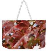 Autumn In My Back Yard Weekender Tote Bag