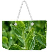 Autumn Joy Stonecrop Weekender Tote Bag