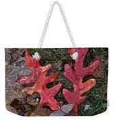 Autumn Leaf Art IIi Weekender Tote Bag