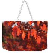 Autumn Leaves In Medford Weekender Tote Bag