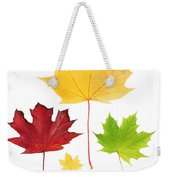 Autumn Leaves Isolated Weekender Tote Bag