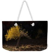 Autumn Light Weekender Tote Bag by Mike  Dawson