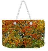 Autumn Maple Tree Weekender Tote Bag