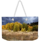Autumn Meadow Weekender Tote Bag by Carol Cavalaris