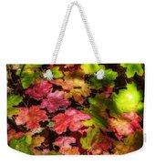 Autumn Rainbow  Weekender Tote Bag