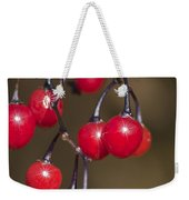 Autumn Red Berry Sparkle Weekender Tote Bag